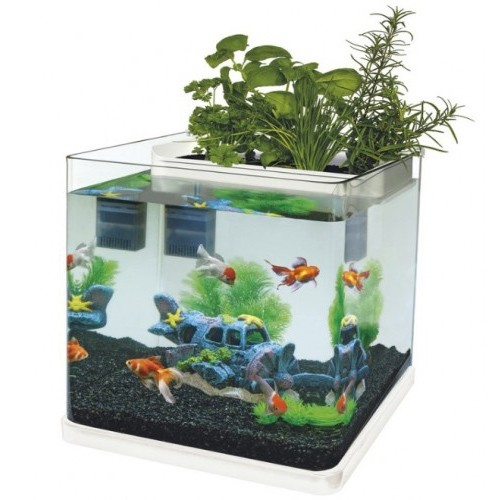 Superfish aquaponics 23 wit