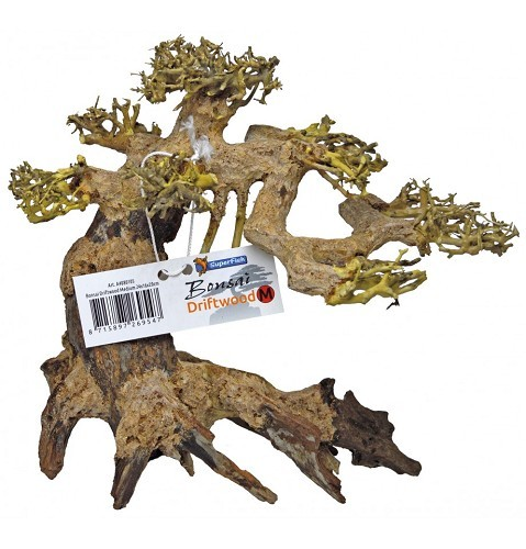 Superfish bonsai driftwood S 23x12x15 cm