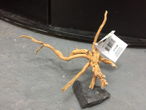 spider wood on rock s (20-30cm)