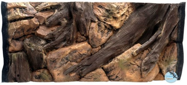 Backgrounds root 80x40 cm