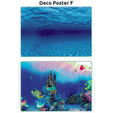 Superfish deco poster F3 100x49 cm