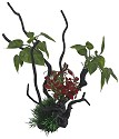 Superfish deco spider & plant l